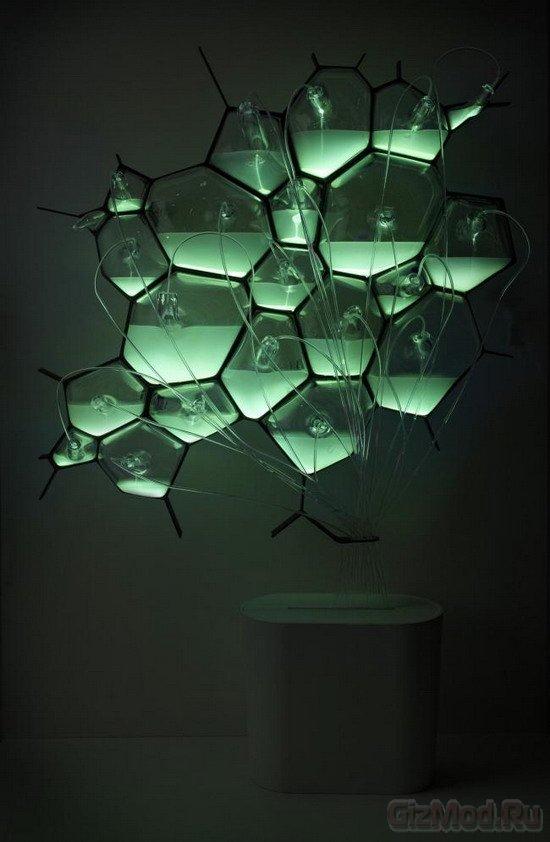 Бактериальные лампы Philips