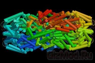 Создан расщепитель воды из белка цианобактерий