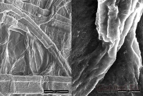 Создан эластичный проводник из серебряных нанотрубок