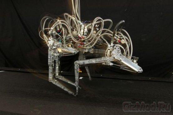 Робот-гепард поднял планку скорости