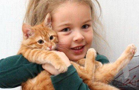 Животные в доме укрепляют иммунитет ребенка