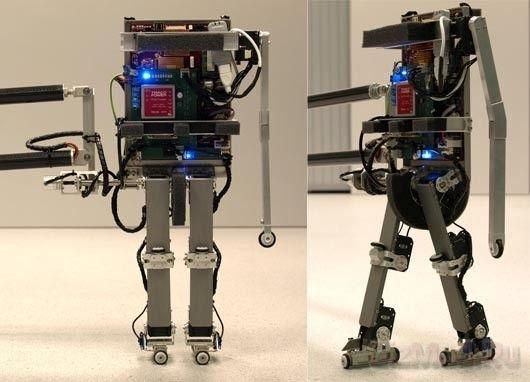 Робот самостоятельно учиться ходить
