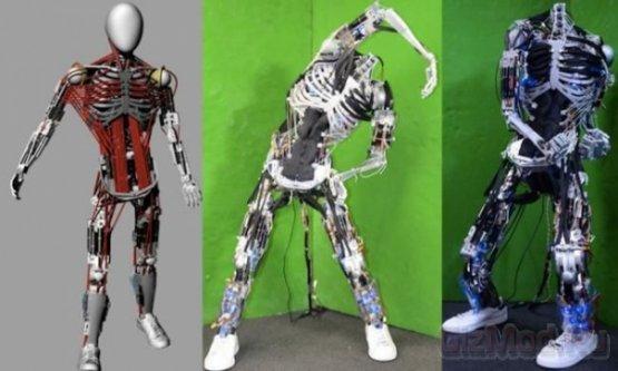 Японский робот-гуманоид с рекордным колическтвом мышц