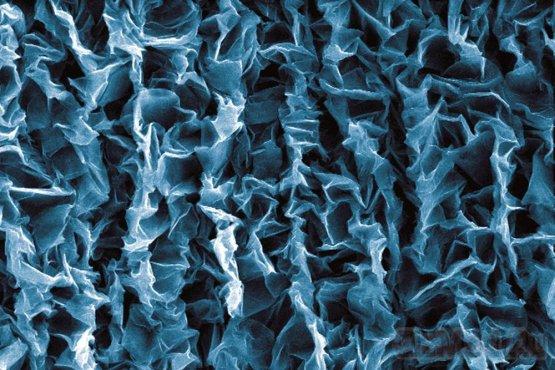 Графен применили для электрических наномышц