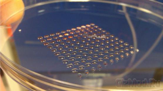 Стволовые клетки напечатали на 3D-принтере