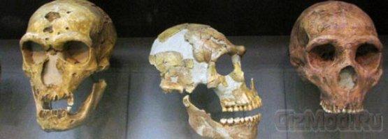 Неандертальский человек, факты и вымысел