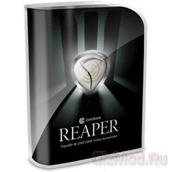 REAPER 4.60 RC1 - редактор аудио