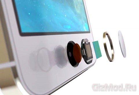 Обзор новичка Apple iPhone 5S