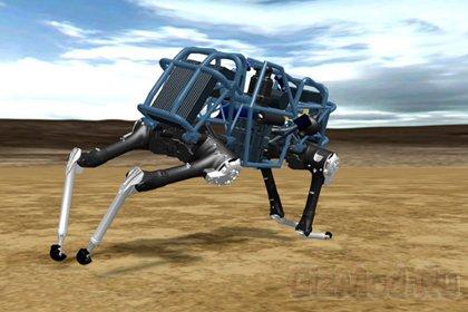 Автономный робот WildCat