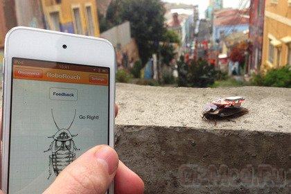 RoboRoach - домашние тараканы-киборги