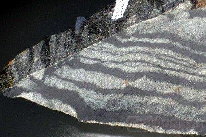 Возникновение жизни отодвинули на 200 миллионов лет