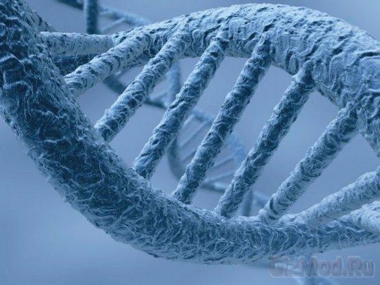 Sony P5 Inc займется геномом человека
