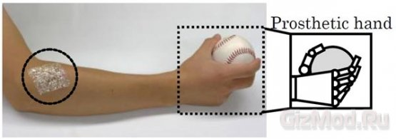 «Бионическая кожа» толщиной 1 мкм родом из Японии