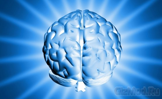 DARPA разрабатывает мозговые имплантаты