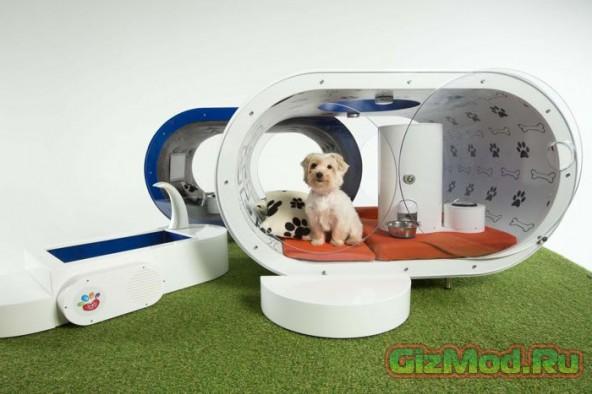 Дом-мечта для собак