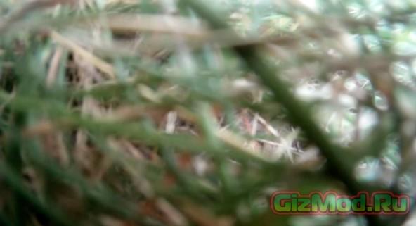 Свободное падение камеры GoPro с 3 000 метров