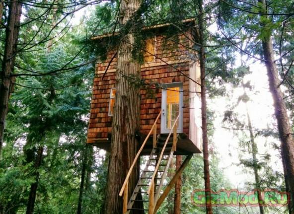 Дом на дереве, который построил Джефф