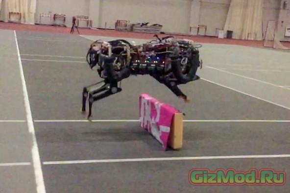 Робот-гепард покоряет препятствия