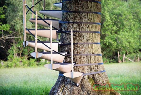 Лестница для дерева