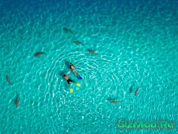 Конкурс фотографий от дронов