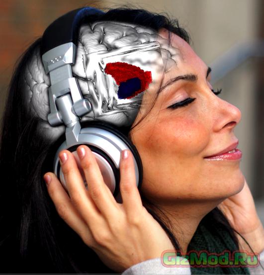 Стиль мышления определяет музыкальный вкус