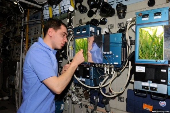 «Лада-2» - оранжерейная установка для МКС