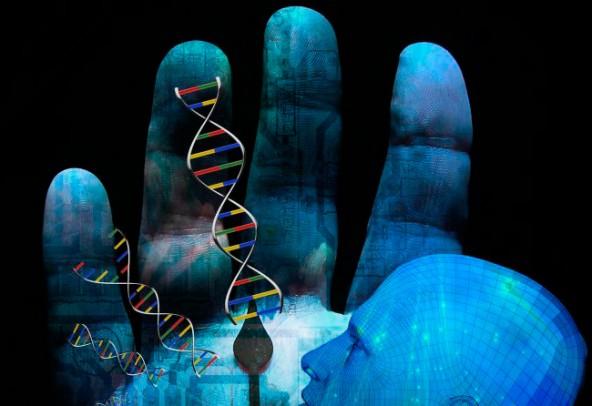 20% человеческого генома не используется